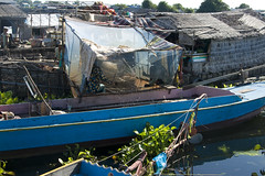 200810-CAM-AML-9398 (Ann Lovell) Tags: fishing cambodia vietnamese culture siemreap floatingvillages boatsfloatingvillages