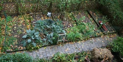 home garden aerial
