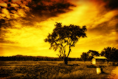 Undas (the-earth-colors) Tags: november sunset tree barn canon landscape eos gold flickr philippines surreal explore filipino efs 1022mm hdr pinoy orton undas glendon earthcolors kabayan 40d kalagkalag macquinto