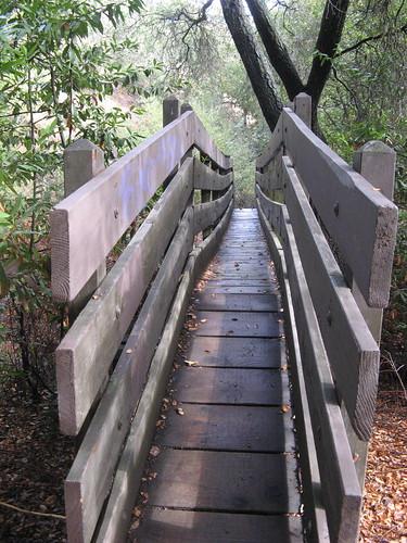 Skinny bridges