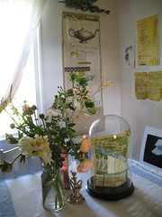 My dining room with my artwork on the wall, 2008 (Tara Badcock) Tags: home artwork interiors embroidery interior curtain objects skirt textile curtains textiles cushion myhome cushions artworks chezmoi teacosy australianartist tasmanianartist homewares handembroidery personalobjects objetstrouve tarabadcock embroideredtextiles treacosies framedartworks