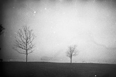 Lost in time (slithy-toves) Tags: morning trees blackandwhite newyork misty fog moody explore oops ithaca olympusxa2 stewartpark happyaccidents ilford400 homedevelopment
