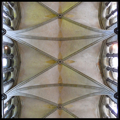 vault (fourcotts) Tags: square cathedral ceiling salisbury vault vaulted wiltshire 500x500 fourcotts