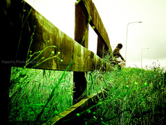 One last look at the past... (~Haani~) Tags: newzealand sky green nature grass leaves clouds fence grey heart auckland lonely past lightpost reminisce mangere haani