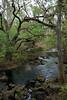Hillsborough River (Photos by Courto) Tags: park river state hillsborough