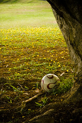 life story of a football (hathu-) Tags: flowers game tree green grass yellow canon ball football flickr loneliness soccer earlymorning bored boredom boring story malaysia hassan adidas soccerball melaka teamgeist underatree gotballs canoneos450d hathu lifestoryofafootball autobiographyofafootball theresultofasleeplessnightandboredom