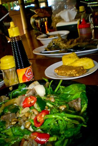 Indonesia_2011-36