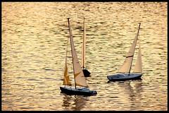 Mare Nostrum #8 – Gulliver's Travels (RiCArdO JorGe FidALGo) Tags: sunset portugal water água toy brinquedo barco lisboa sony pôrdosol belém modelismo espelhodágua dsch2 pffg fidalgo72 ricardofidalgo teleguiado ricardofidalgoakafidalgo72