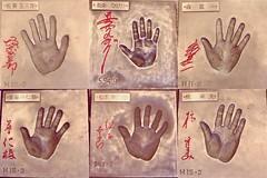 山口智子 画像14