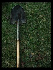 Shovel!