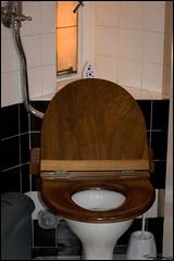 fancy loo (vcrimson) Tags: nottingham england toilet councilhouse upcoming:event=429454 bigukflickrmeet3