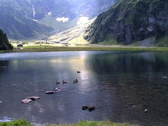 Hintersee (Willem Visser) Tags: hintersee nationalparkhohetauern