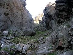 Le couloir montant à la crête de Compolelli : beau couloir raide en éboulis