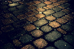 G o l d D u s t (monsters.monsters) Tags: wet rain ground delete save cobblestone dirt cracks filth