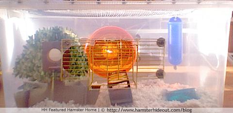 hammyhamsters' first DIY hamster bin