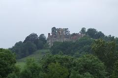 Priory Farm Discovery Walk #10