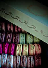 * Macaroons. (Jadore Allure) Tags: london dessert yummy harrods delicious laduree allure macaroons jadore