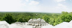 Calakmul (chblet) Tags: panorama mxico campeche 100 chablet