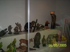 Parque Das Aves / Parque de las Aves (♥  evelyn  ♥) Tags: misiones iguazufalls cataratasdeliguazú