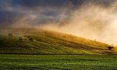 The Shire (Nomadic Vision Photography) Tags: mist morninglight scenic magical goldenlight farmlands maninnature theshire johnreid wwwcatchlightsacom tinareid nomadicvisionsouthafrica