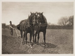 'At Plough - The End of the Furrow' (National Media Museum) Tags: horses man men field hat farming hats pb chain campo fields cavalos plow agriculture plowing plough trabalho plows bridle furrows ploughing furrow arar peterhenryemerson nationalmediamuseum walkingplow phemerson