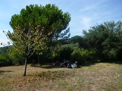 P1000335 (Alessnico) Tags: italy italia stage liguria canto italie chant montemarcello