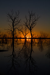 Twins (norbography) Tags: sunset orange reflection tree water silhouette landscape geotagged damn vote bourke toddnorbury favewww wpmvote anotherwpmvote geo:lat=30046552 geo:lon=145888191 onzfave