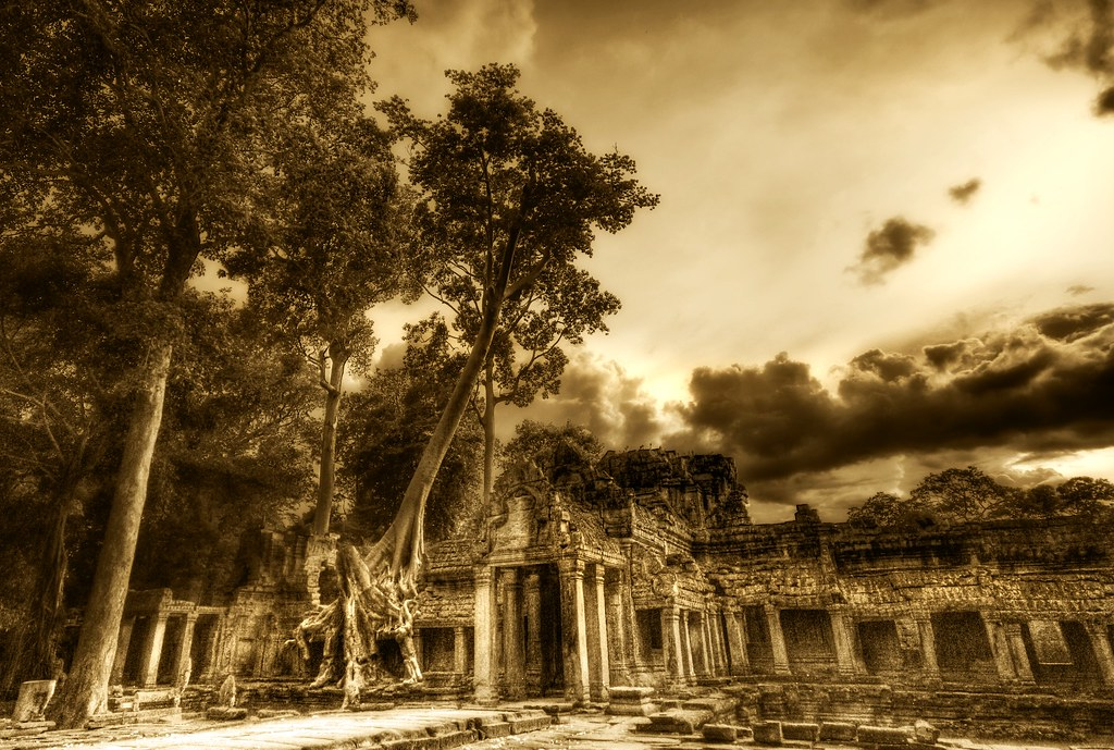 The Overgrowth in the Cambodian ruins