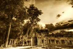 The Overgrowth in the Cambodian ruins (Stuck in Customs) Tags: old trip travel trees panorama tree art tourism lines composition painting temple photography intense scary ancient nikon ruins asia cambodia shoot artist alone photographer shot angle image unique background details d2x perspective picture surreal angkorwat tourists haunted jungle edge processing horror pro dreamy framing portfolio capture angkor wat monuments scare tones tombraider civilisation hdr banyan treatment toning siemriep treysalbum stuckincustoms treyratcliff