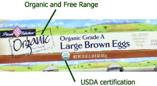 Labels on an egg carton - including organic and free range