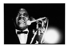Louis Armstrong (Roberto Polillo (jazz)) Tags: trumpet jazz voice singer armstrong tromba louisarmstrong voce showonmysite