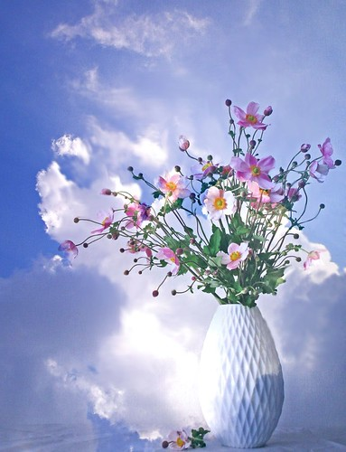 Flower arrangement in the sky by tanakawho, on Flickr