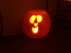 Cornflower's pumpkin