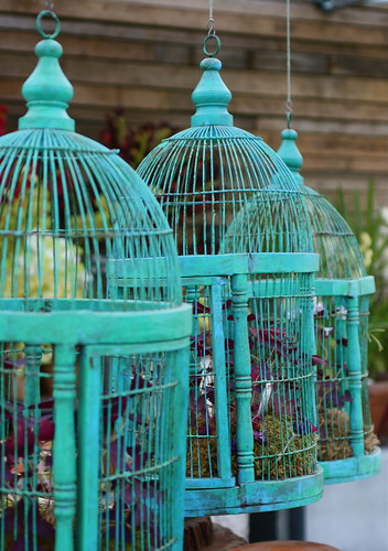 Birdcages by melingo wagamama, on Flickr