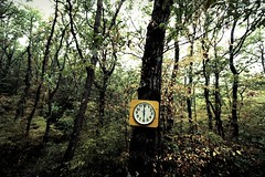Belong to nature (Vincepal) Tags: clock nature amazing time natura orologio tempo belong