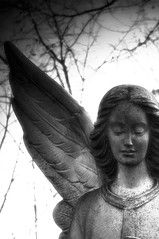 Beautiful Angel. B&W (maryn0503) Tags: cemeteries cemetery graveyard statue angel michigan lansing gravesite flintmichigan