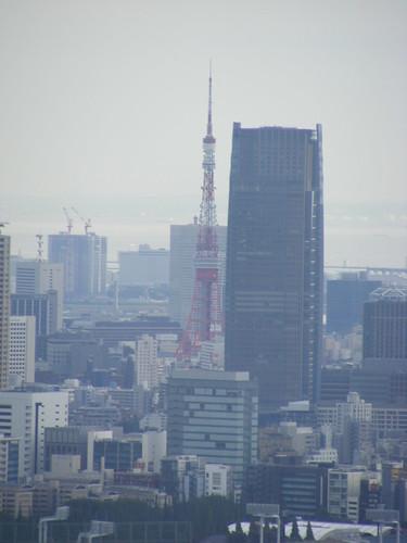 2008_1012shinjuku0082