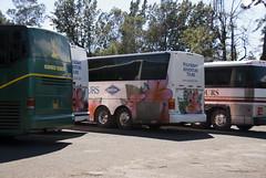 Tour Buses at Waimea Canyon Lookout