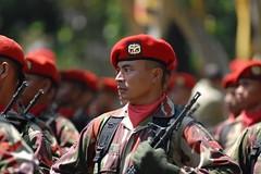 the expert (rizky elfikar) Tags: indonesia force tni abri darat tentara angkatandarat kopassus akabri