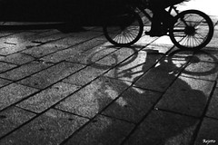 V : Transport Properties of Shadows [310/366] (Rejetto) Tags: street blackandwhite bw blancoynegro monochrome monocromo monotone bn biancoenero rumors monotono project366 rejetto flickr:user=rejetto