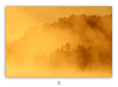 Nordic Mist (Renald Bourque) Tags: morning sunset canada quebec foggy qubec parc mastigouche rserve outstandingshots lefion mywinners colorphotoaward alemdagqualityonlyclub alemdaggoldenaward