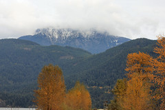 Golden Ears (TASI_B.C.) Tags: autumn snow fall golden ears pittlake goldenears pittmeadows