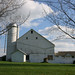 Amish White Barn green grass