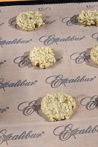 Raw Food: coconut date cookies