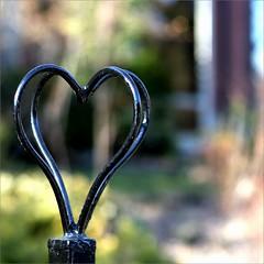Happy Birthday Alexandre! (Maureen F.) Tags: birthday bokeh alexandre squared heartshape fencepost 50mm18 niftyfifty nifty50