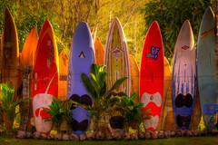 Maui Dreams - Surfboard Fence_Maui Hawaii (kevin mcneal) Tags: light hot nature landscape hawaii islands maui surfing hana hanahighway tropical surfboards singhray canon5dmk2