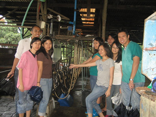 My group and another at the milking parlor.