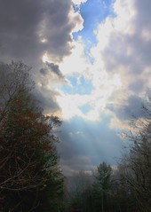 Breakthrough (sylkky2) Tags: trees light sky nature clouds dramatic willow sensational rays catskills nys