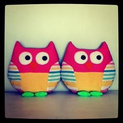 Owlies: too wit! too woo!
