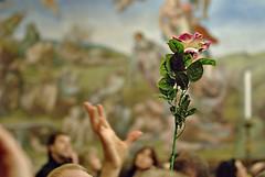 In The Sistine Chapel (AndreasC) Tags: italy vatican rome roma italia michelangelo vaticanmuseum sistinechapel lazio museivaticani cappellasistina lastjudgement giudiziouniversale mywinners superbmasterpiece diamondclassphotographer flickrdiamond dsc4584111111